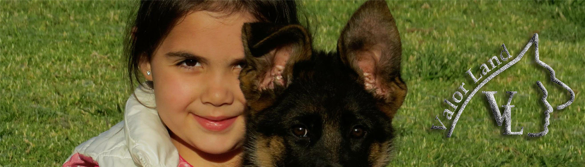 ValorLand German Shepherds